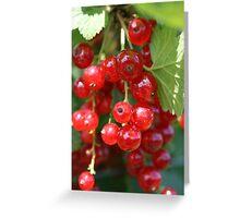Fruit Picking Greeting Card