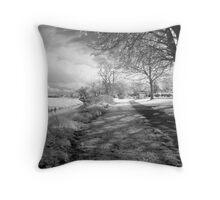 Mark, near Highbridge, Somerset Throw Pillow
