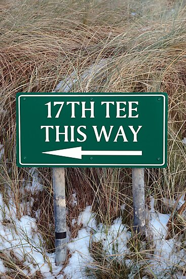 17th tee this way sign by morrbyte