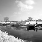 Bridgwater and Taunton Canal #4 by Rusty65