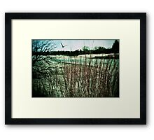 Peace With the Way Things Are Framed Print