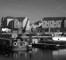Bridgwater Docks #3 by Antony R James