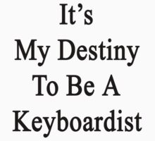 It's My Destiny To Be A Keyboardist by supernova23