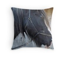 Shire horse Throw Pillow