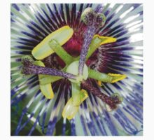 Passion Flower Close Up Kids Tee