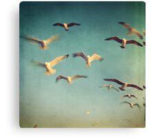 Dans avec les oiseaux Canvas Print