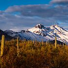 Arizona Mountains in Snow by RobTravis