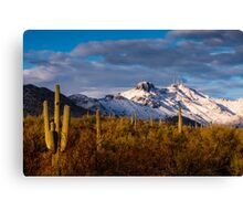 Arizona Mountains in Snow Canvas Print