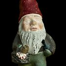 Garden Gnome by Edward Fielding