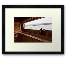 Jimmy birdwatching Framed Print