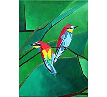 Brightly Colored European Bee-eaters Photographic Print