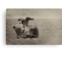 Too Cute (close up) Canvas Print