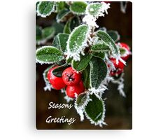Frosty berries Canvas Print