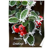 Frosty berries Poster