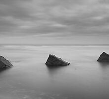 crumbling defences, balmedie by codaimages