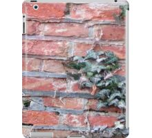 Wall iPad Case/Skin