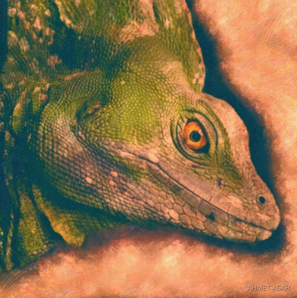 Green Basilisk Lizard by MotionAge Media