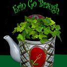 Erin Go Braugh by heatherfriedman