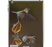 Redpoll Takes Flight iPad Case/Skin