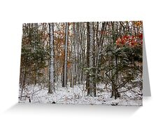 Arkansas Wintering Stix Greeting Card