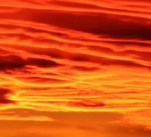 Flame Coloured Sunset Sky Sticker