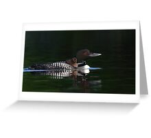 Common loon with chick Greeting Card