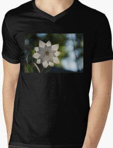 A Star in My Garden Mens V-Neck T-Shirt