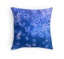 Aspiration 1 Throw Pillow