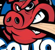 Rockford Ice Hogs Sticker