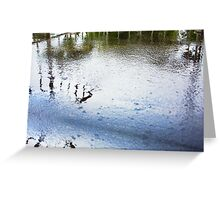 Wet Balcony - A Month's Rain In A Day - 11 03 13 Greeting Card