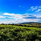 View of Brown Clee by Danny Thomas