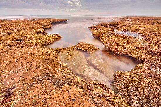 Open Rock Pool by John Sharp