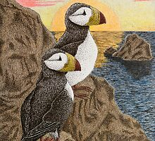 Puffins on Sunset Cliff by jkartlife