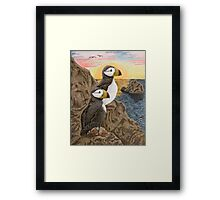 Puffins on Sunset Cliff Framed Print