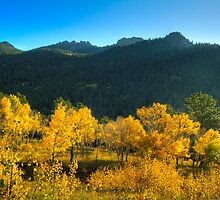 Fall in the Mountains by Joel Meaders