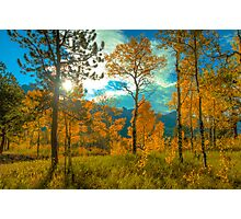 Morning Light in Fall Photographic Print