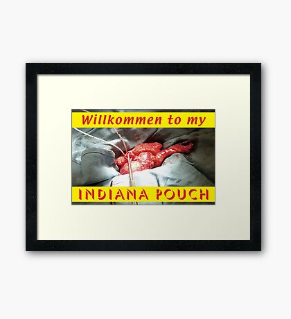 Indiana Pouch 2 Framed Print