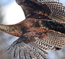 Turkey Flying - Wild Turkey Sticker