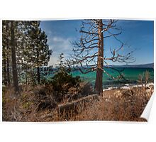 Secret Creek Beach Lake Tahoe Poster