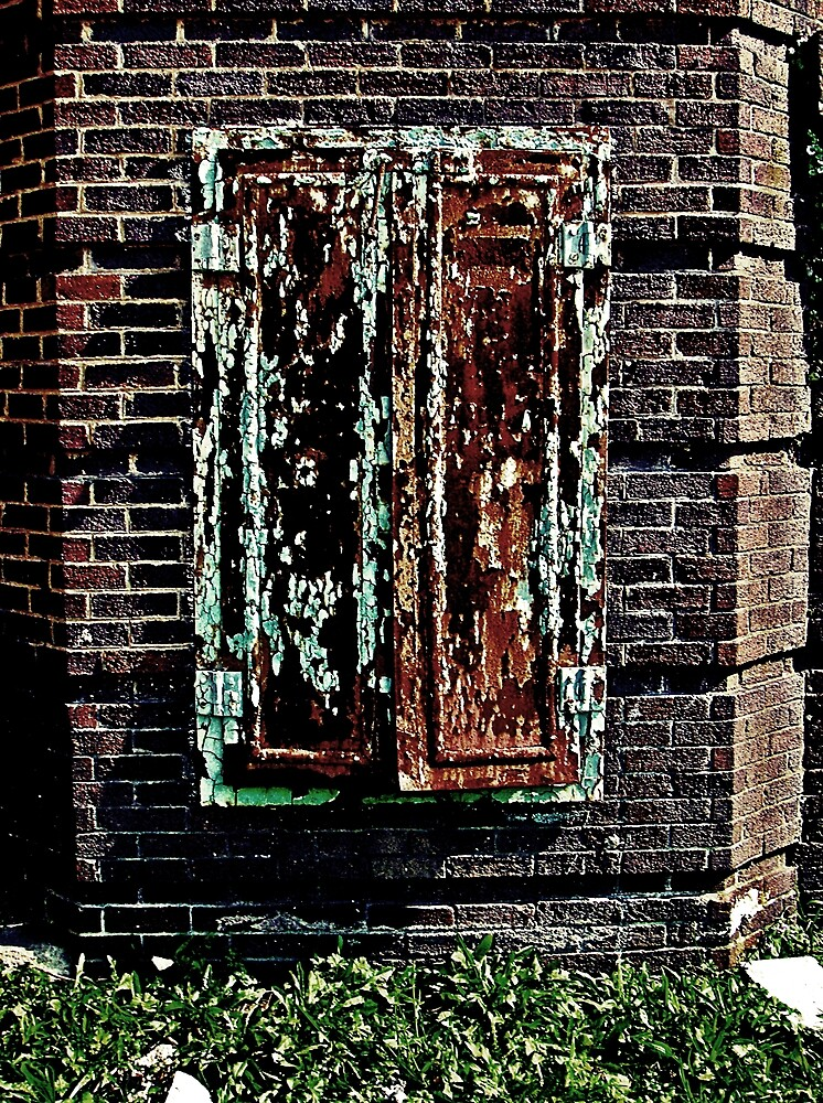 If It Has Hinges It Must Be A Door  by Paul Lubaczewski