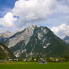 Mountain Town by Timothy L. Gernert