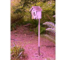 Shovel Birdhouse Photographic Print