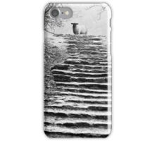 Dovedale Steps iPhone Case/Skin
