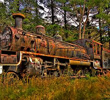 Just Call Me Rusty - Zig Zag Railway, Lithgow NSW Australia - The HDR Experience by Philip Johnson