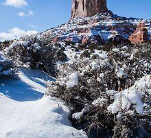 Winter in  the Desert by RobTravis