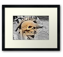 You only live once..... Framed Print