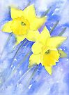 Daffies in the wind on a cold March day by Jacki Stokes