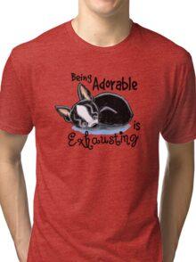 Boston Terrier Being Adorable Tri-blend T-Shirt