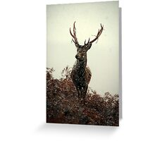 Stag in a blizzard Greeting Card
