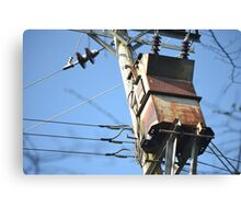 Vintage weathered electrical box Canvas Print